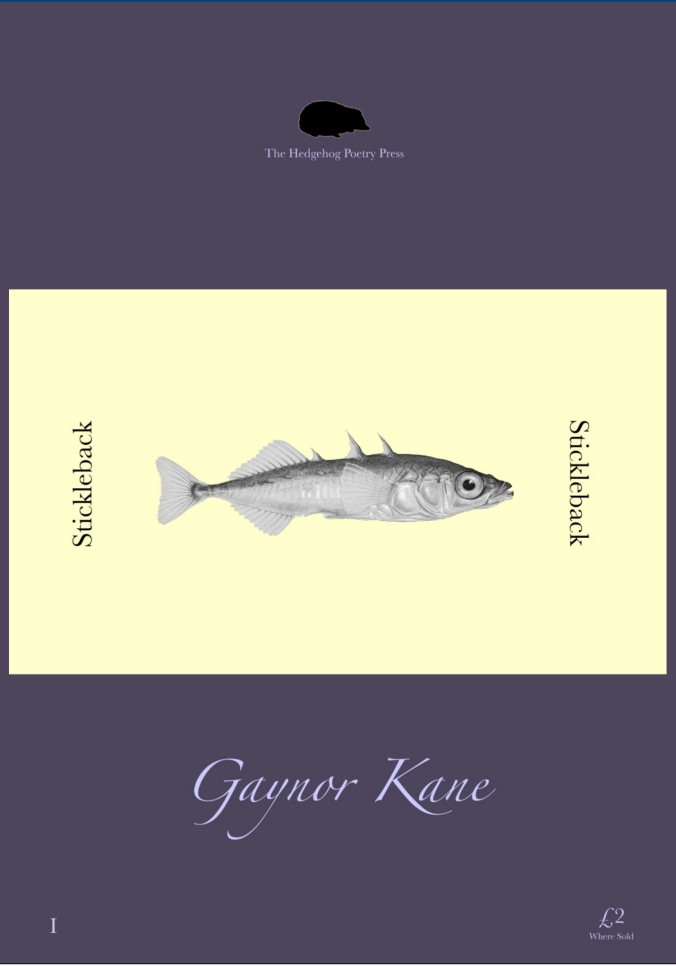 Stickleback Cover - G Kane