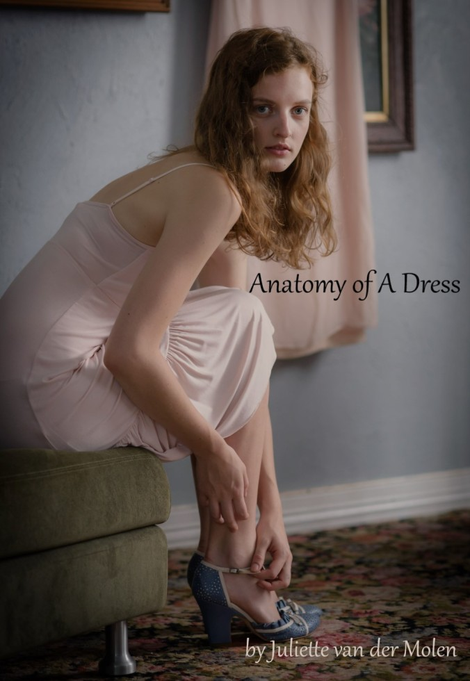 Anatomy-of-a-Dress-Cover-Art