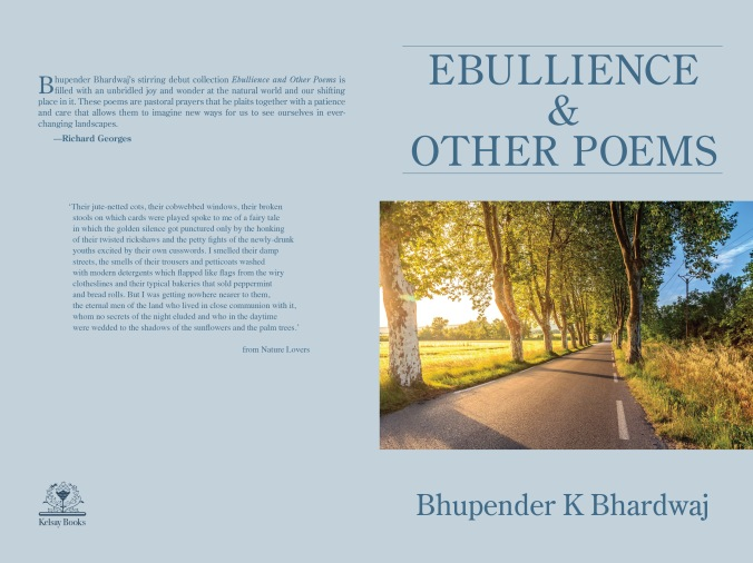 Ebullience Book Cover[68005]