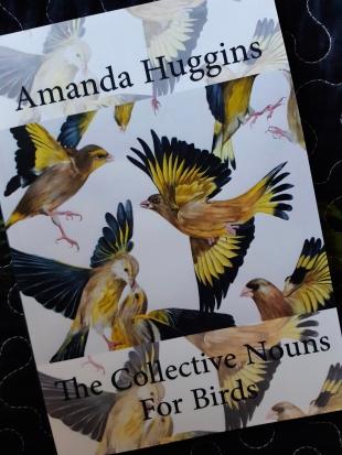 Amanda Huggins 2