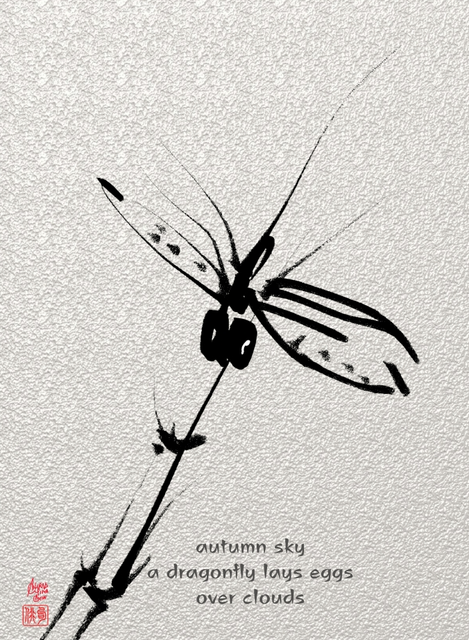 ChristinaChin_dragonfly on the water_Wombwell Rain