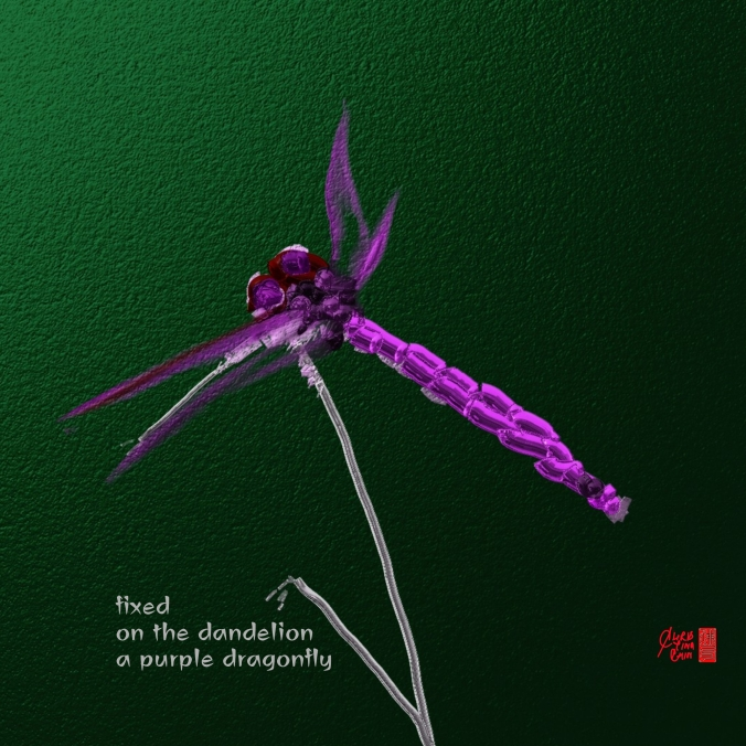 ChristinaChin_purple dragonfly_Wombwell Rainbow