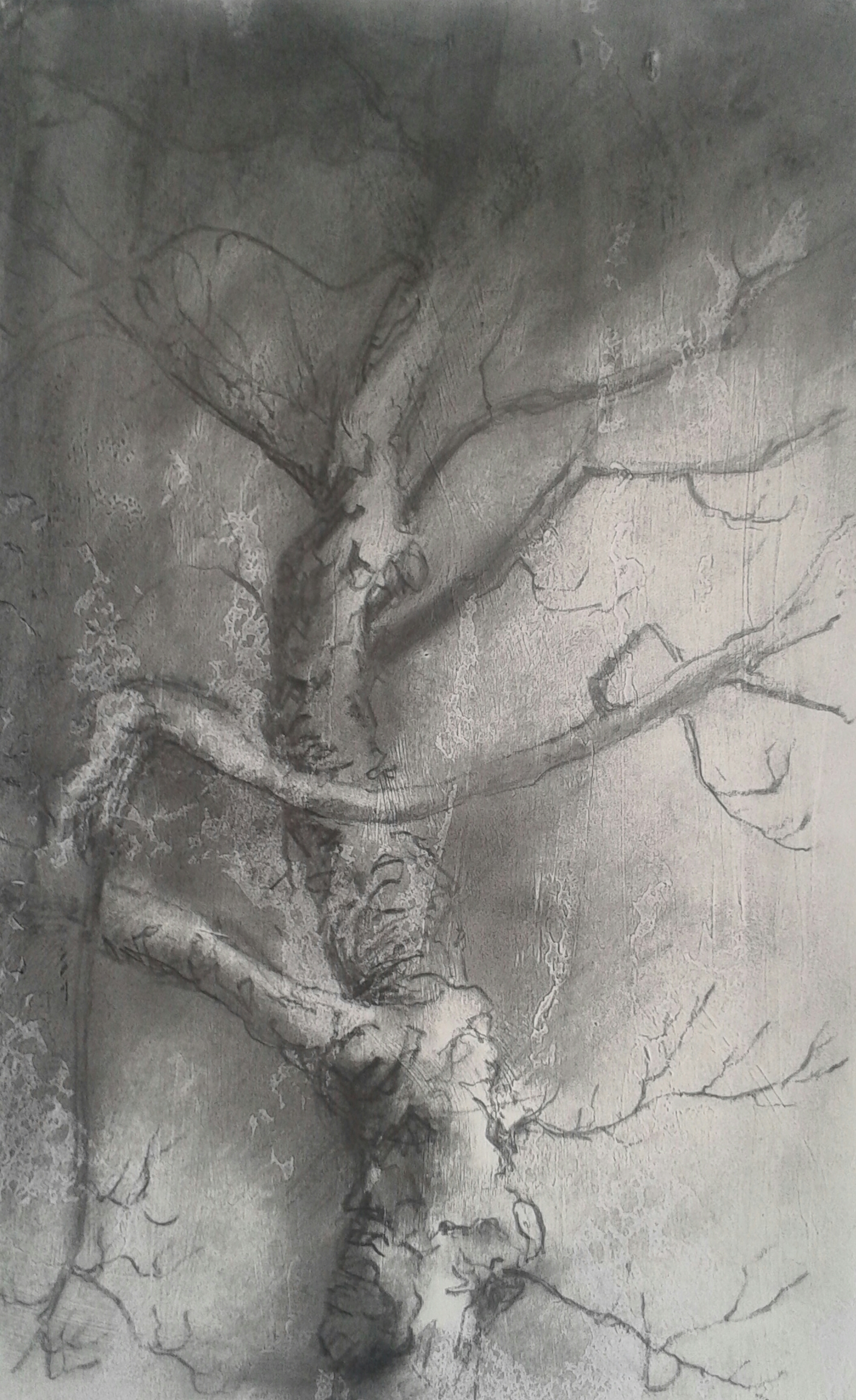 TC22 Night tree