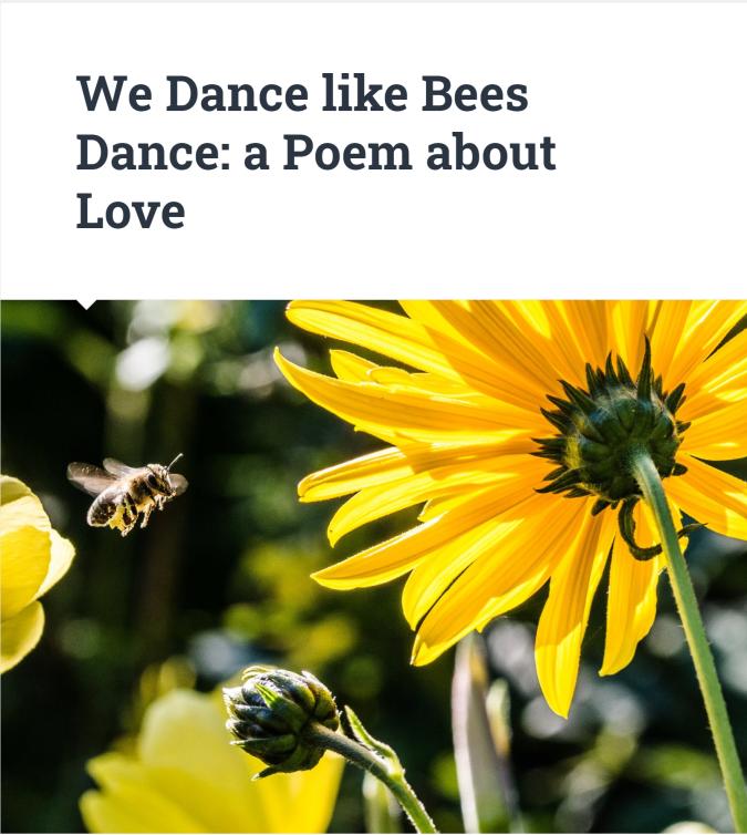 We dance like Bees Dance 1