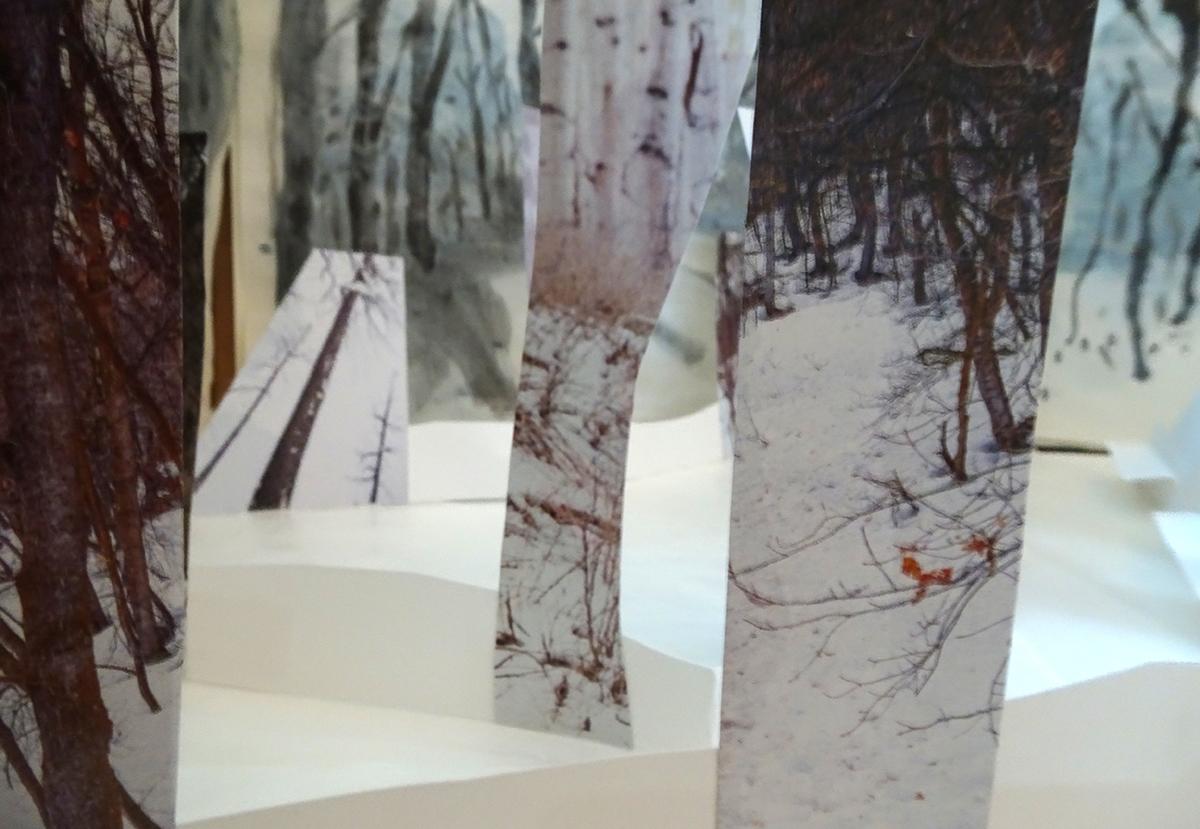 winter forest KRFeb4