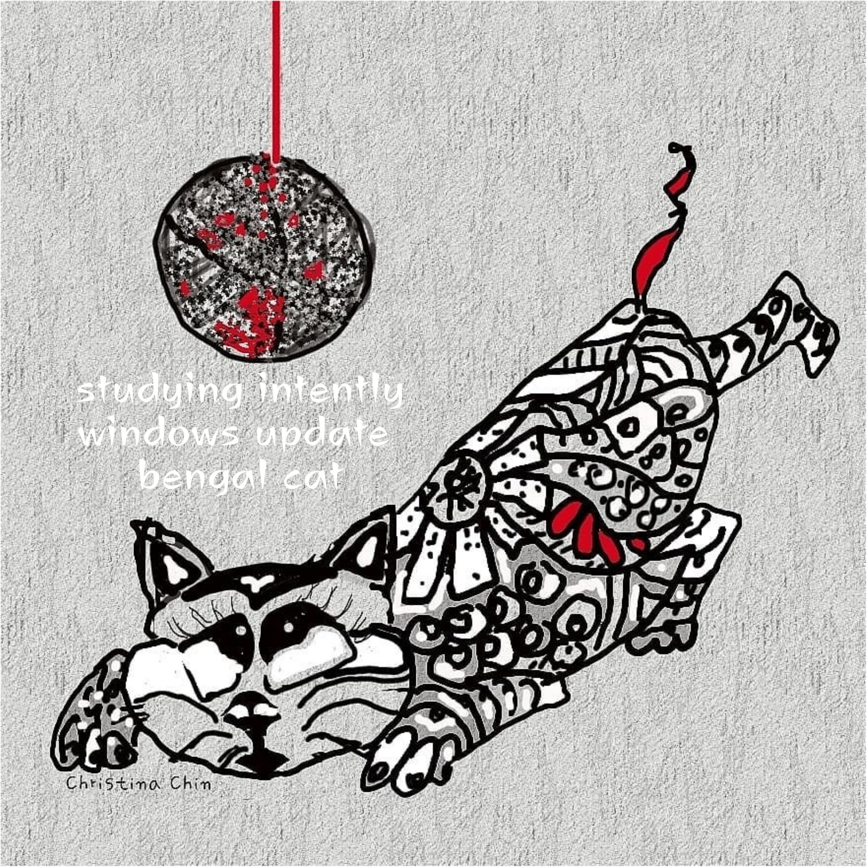 ChristinaChin_bengal cat_ THF