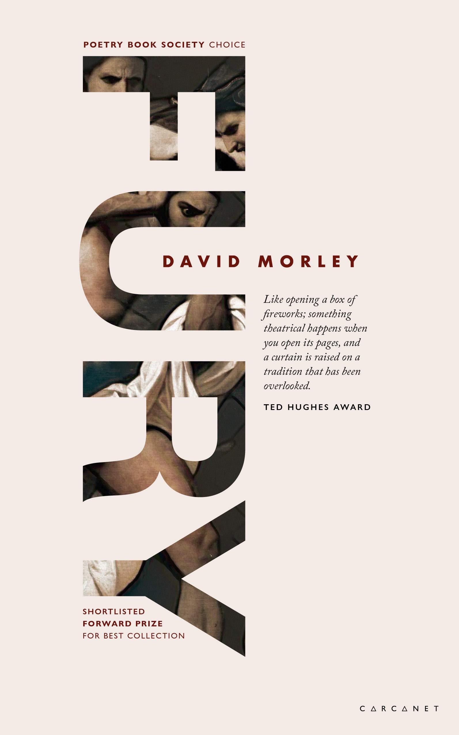 Fury by David Morley