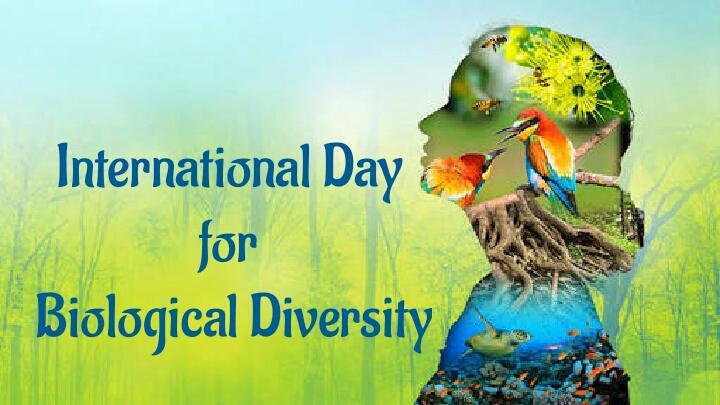 biodiversity 2021