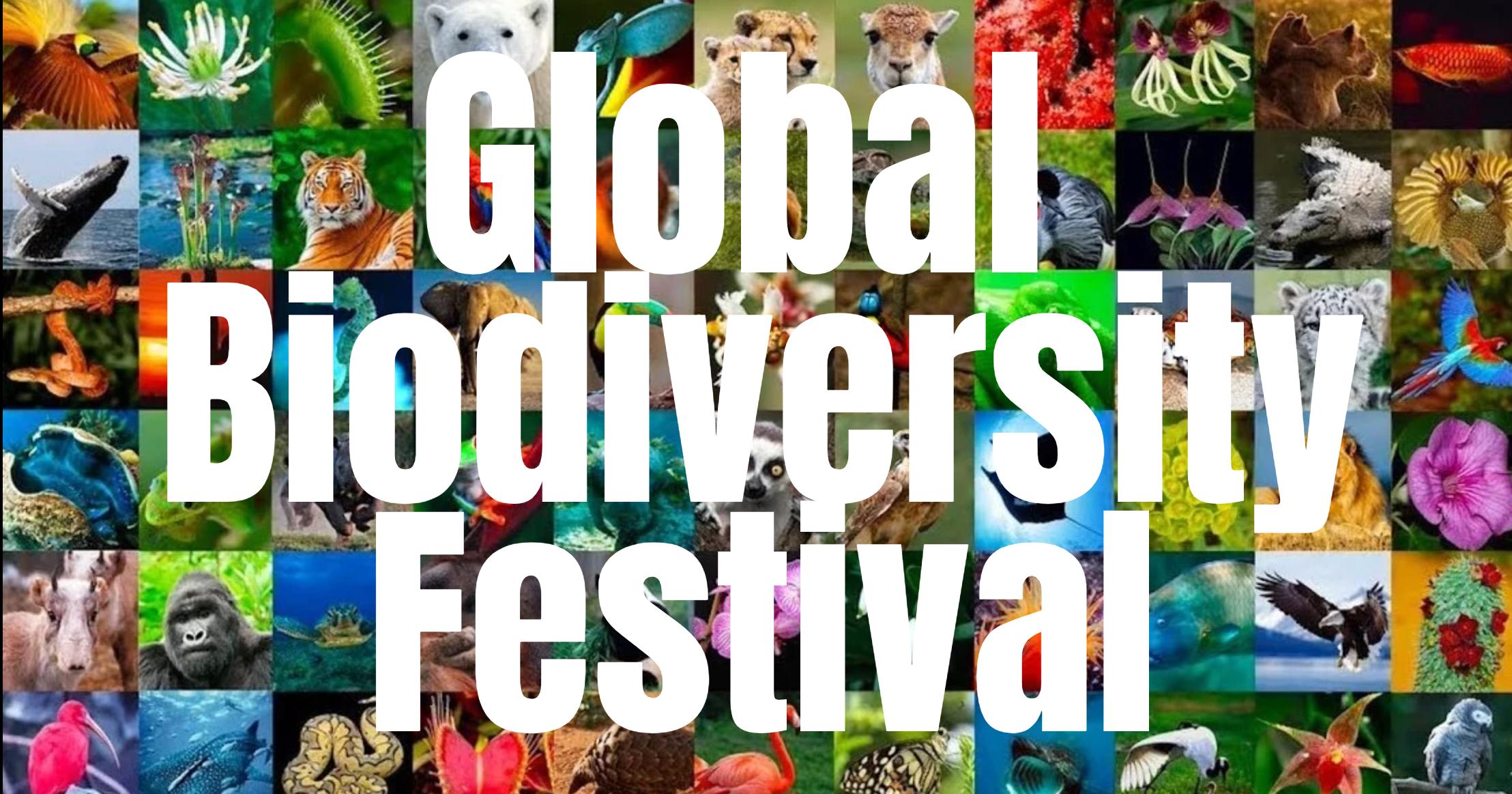 global biofest