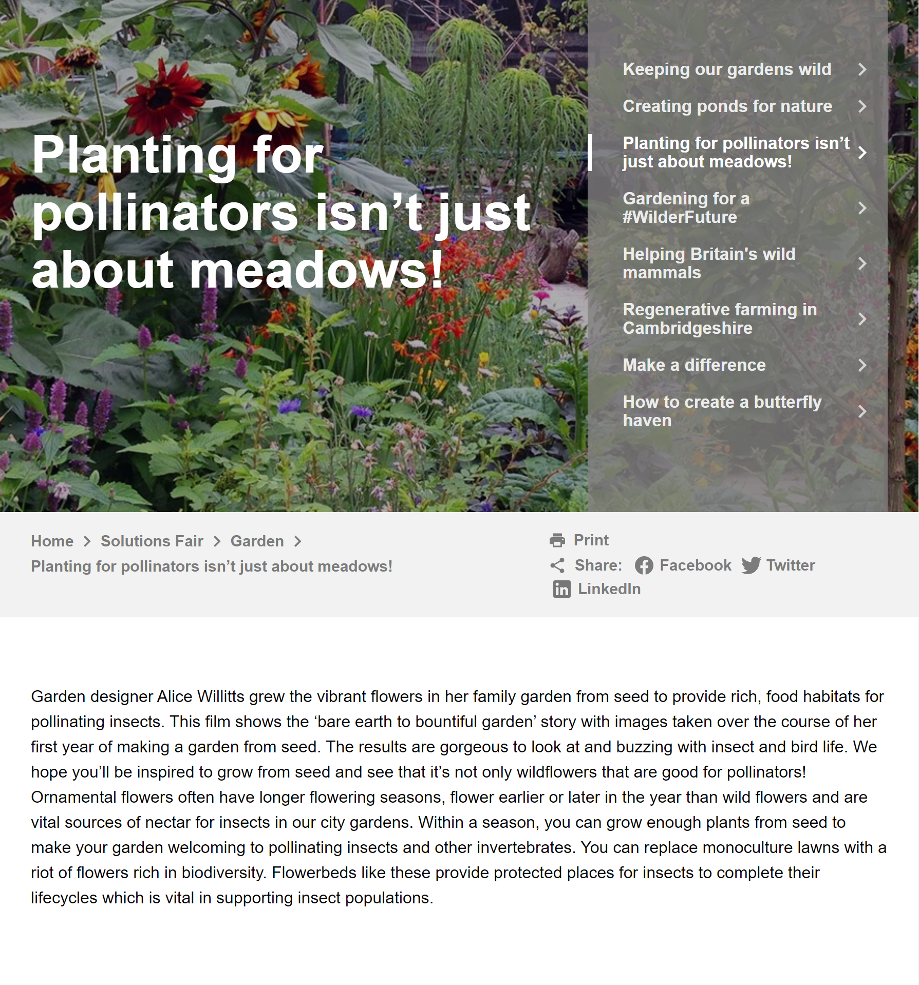 planting by Alice Willetts 1