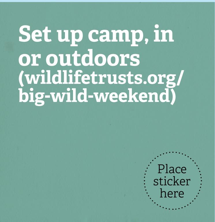 30Days Wild set up camp