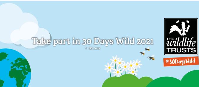 30days Wild