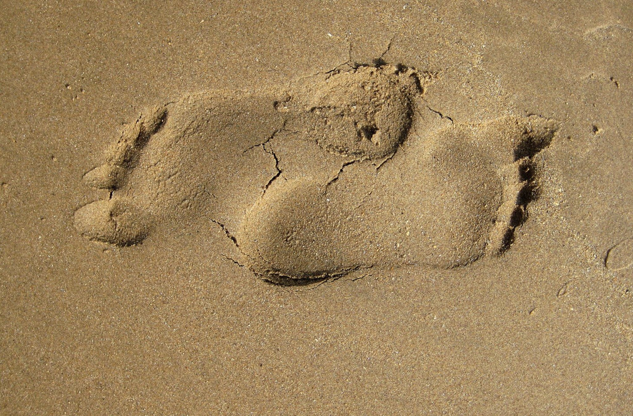 barefoot sand by Jim the Poet