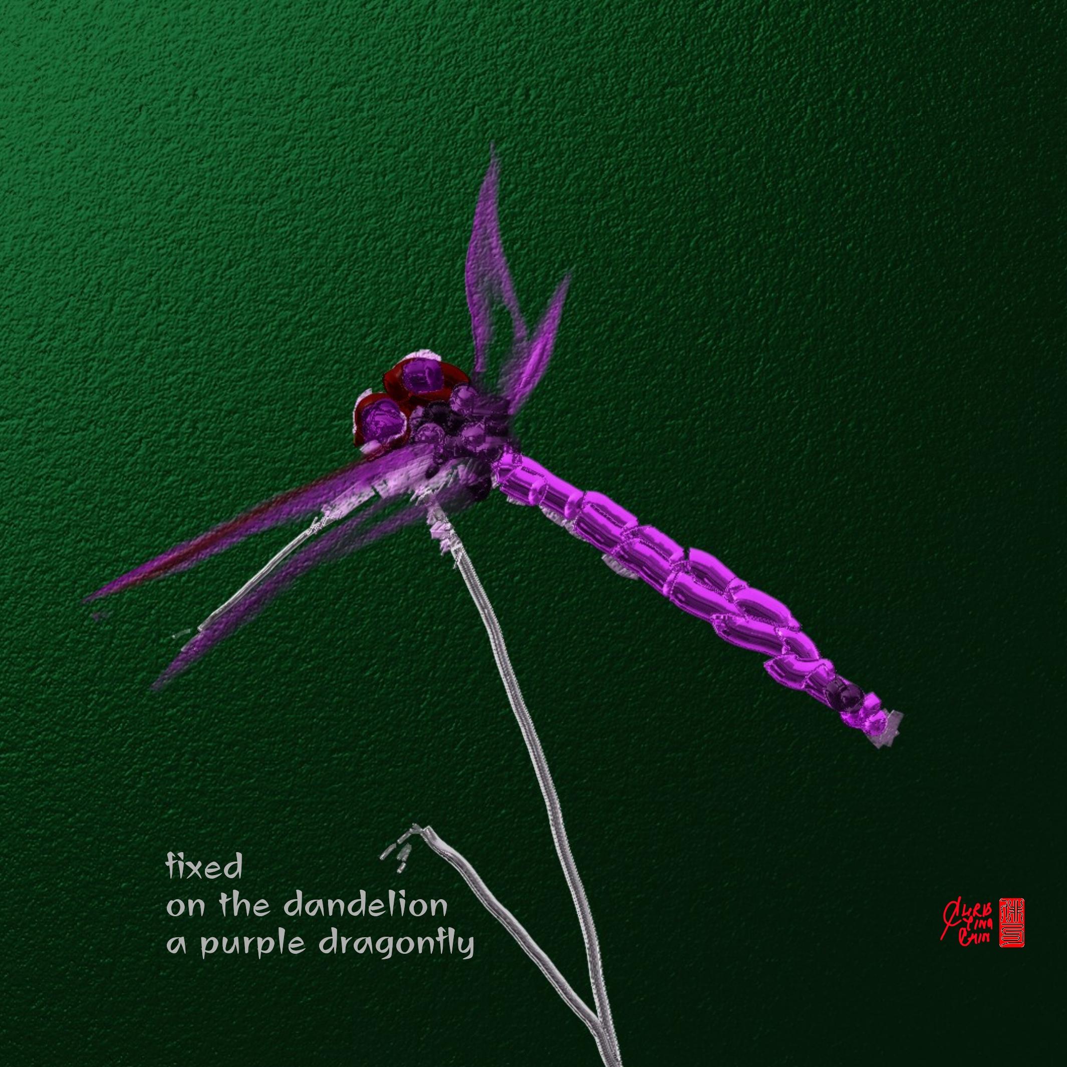 ChristinaChin_purple dragonfly_Wombwell Rainbow