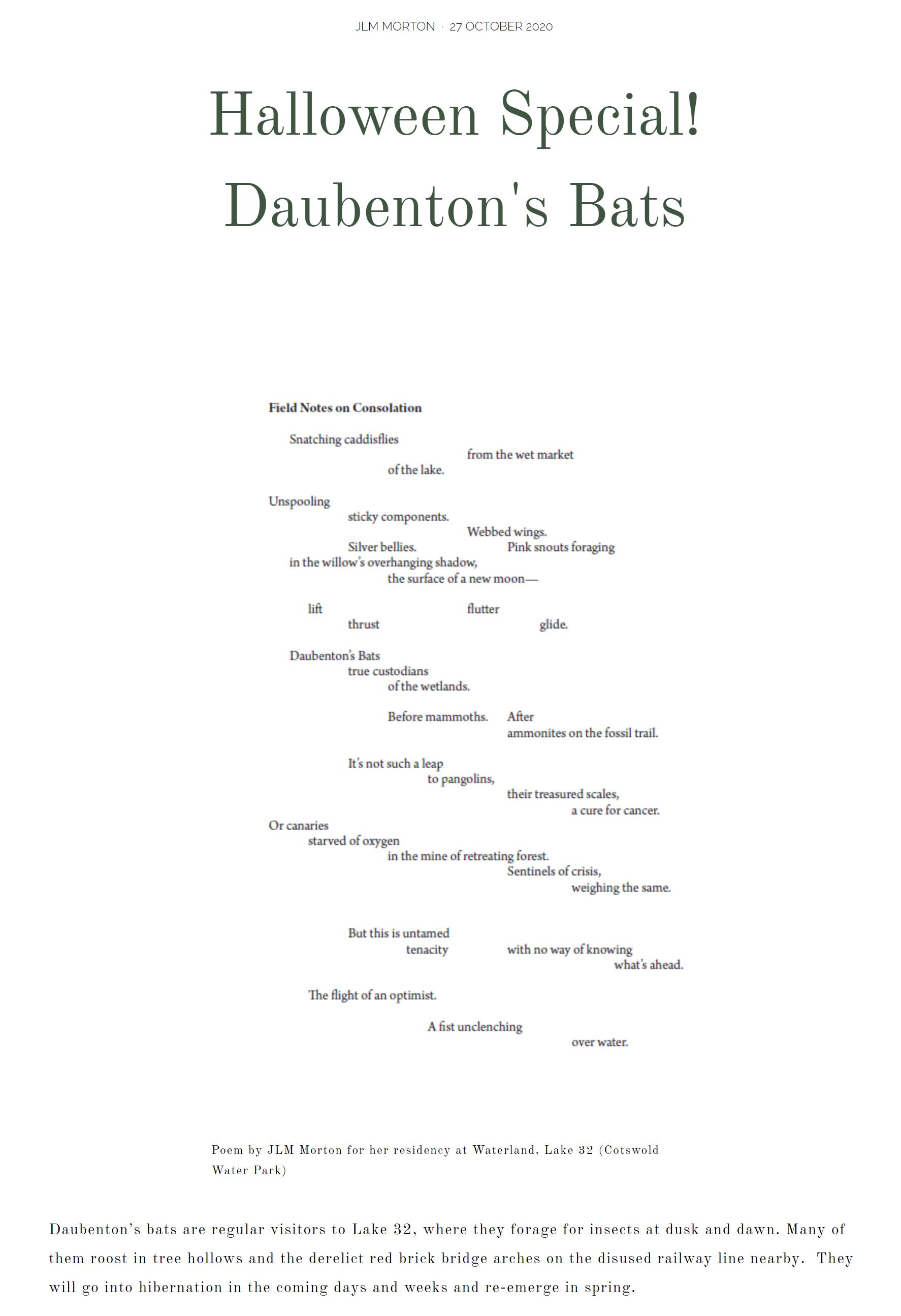 Daubenton's Bats by JLM Morton