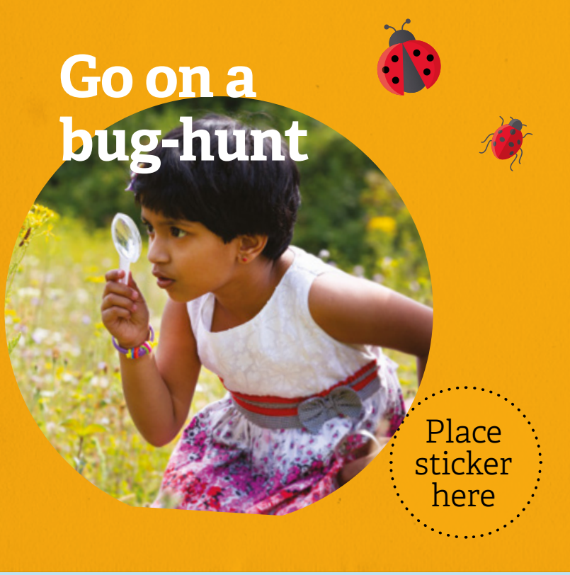 Go on a bughunt 30 Days Wild