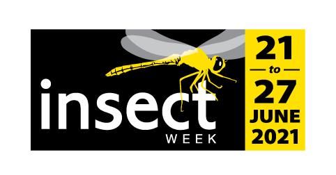 insect week