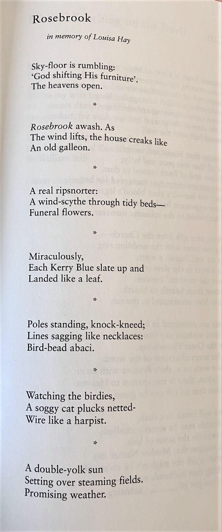 Rosebrook by Adran Rice