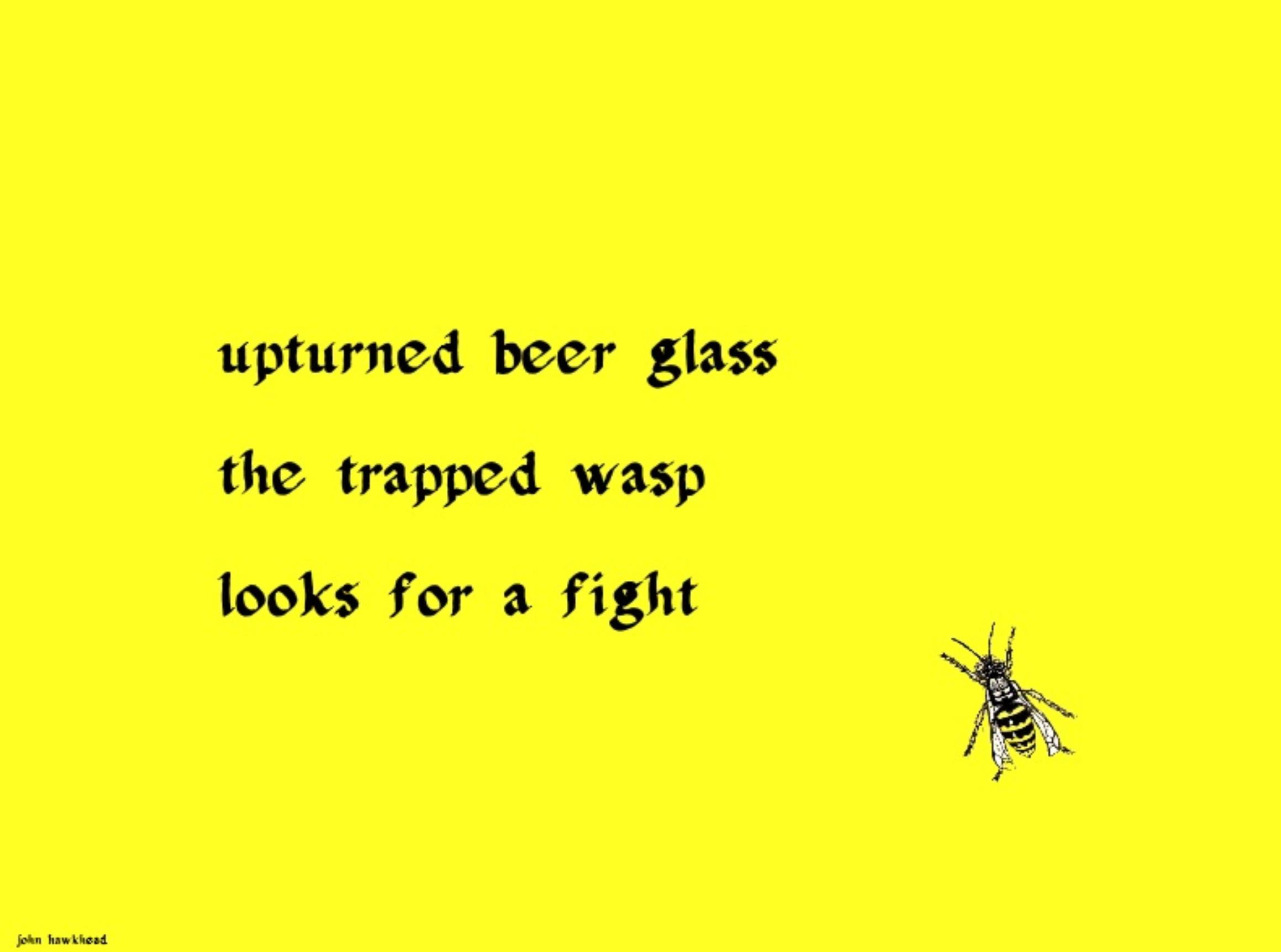 wasp by John Hawkhead