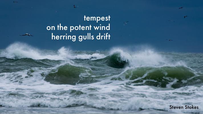 haiku 1 by steven stokes