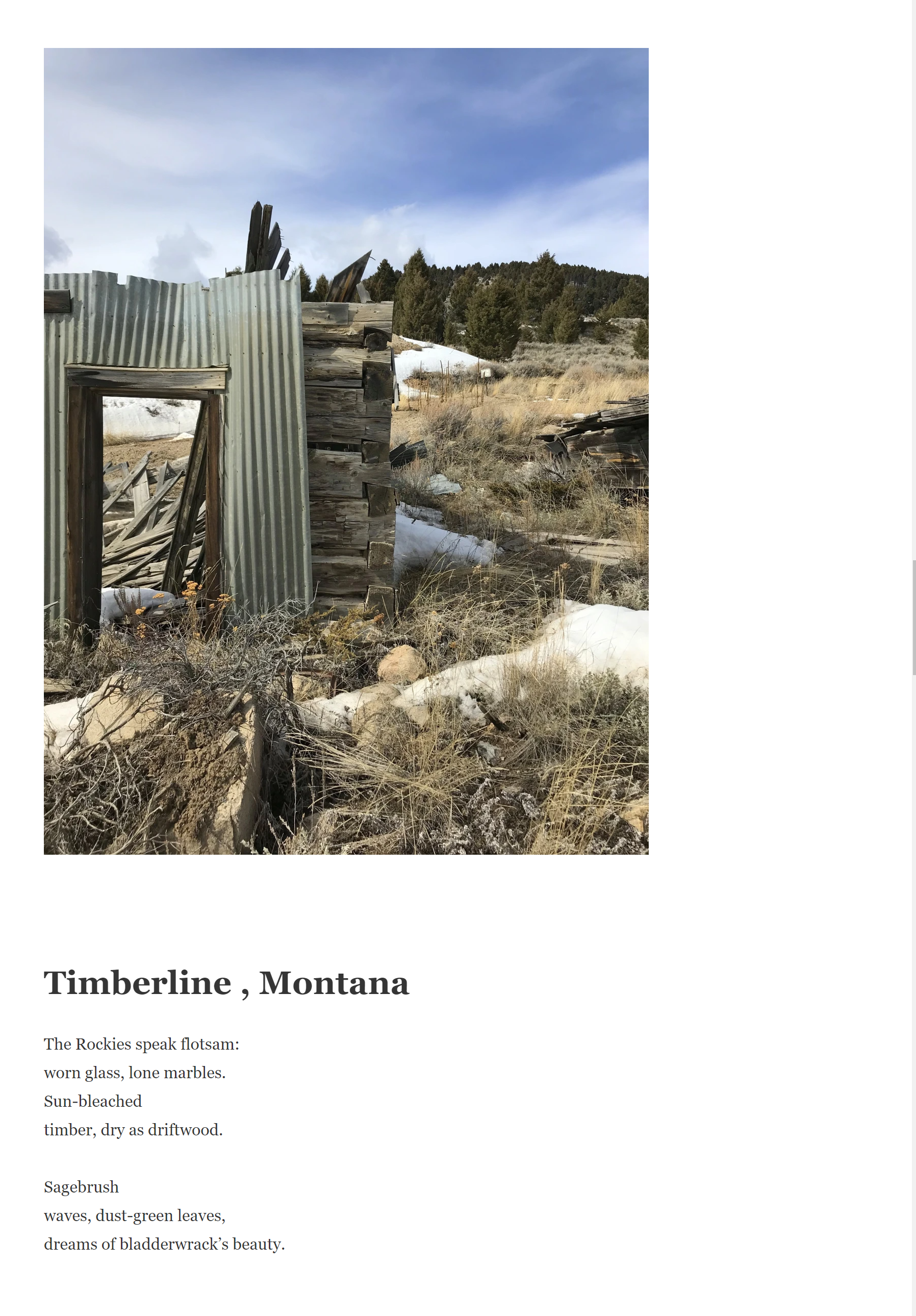 Timberline montana by ms evans