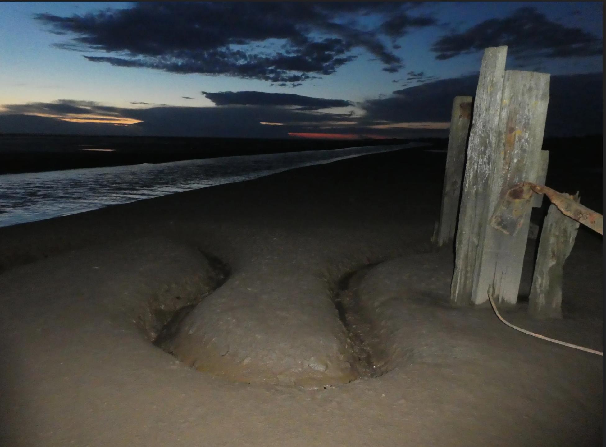 shoreline by Geoff Holmes