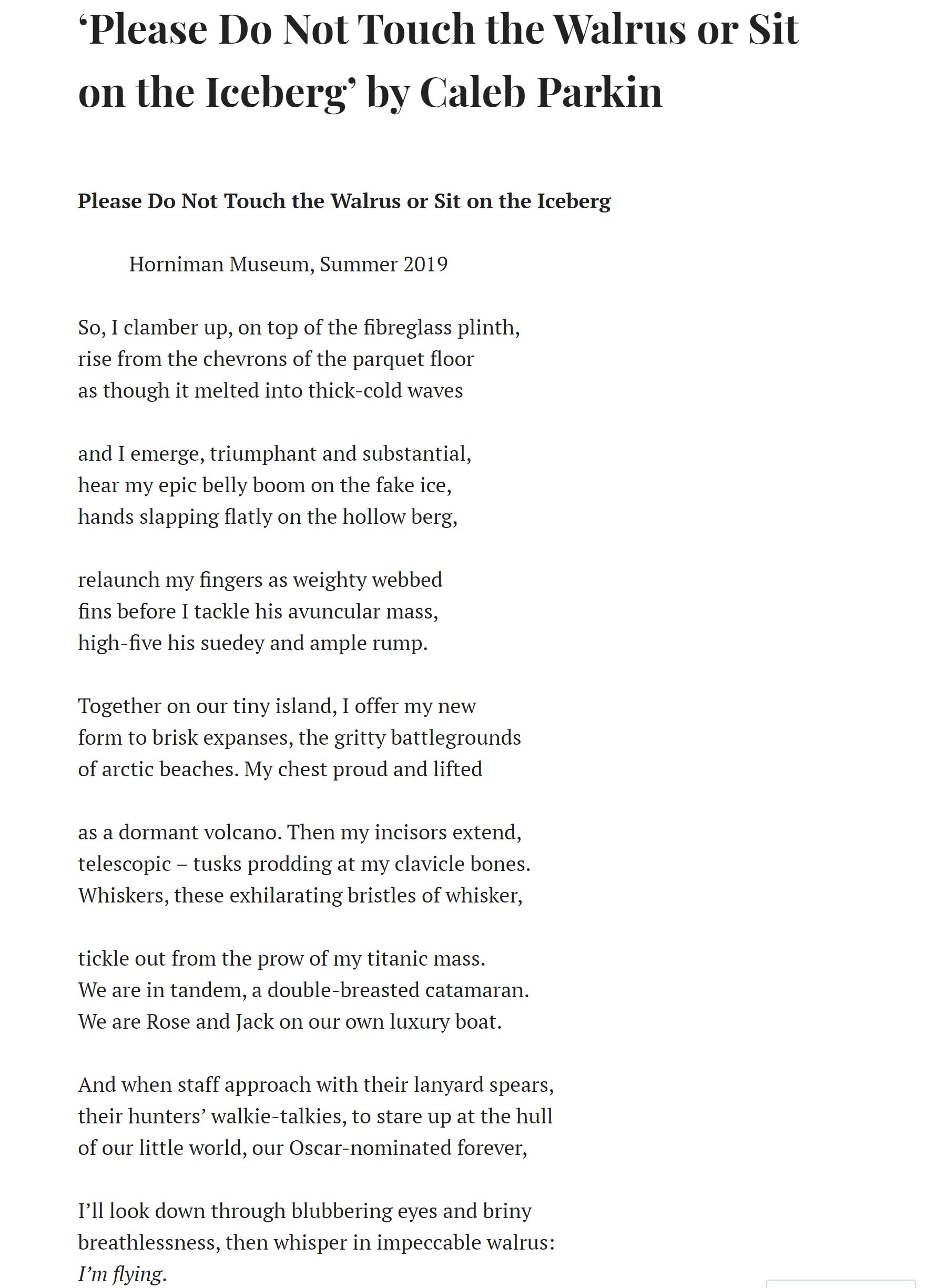 Walrus by Caleb