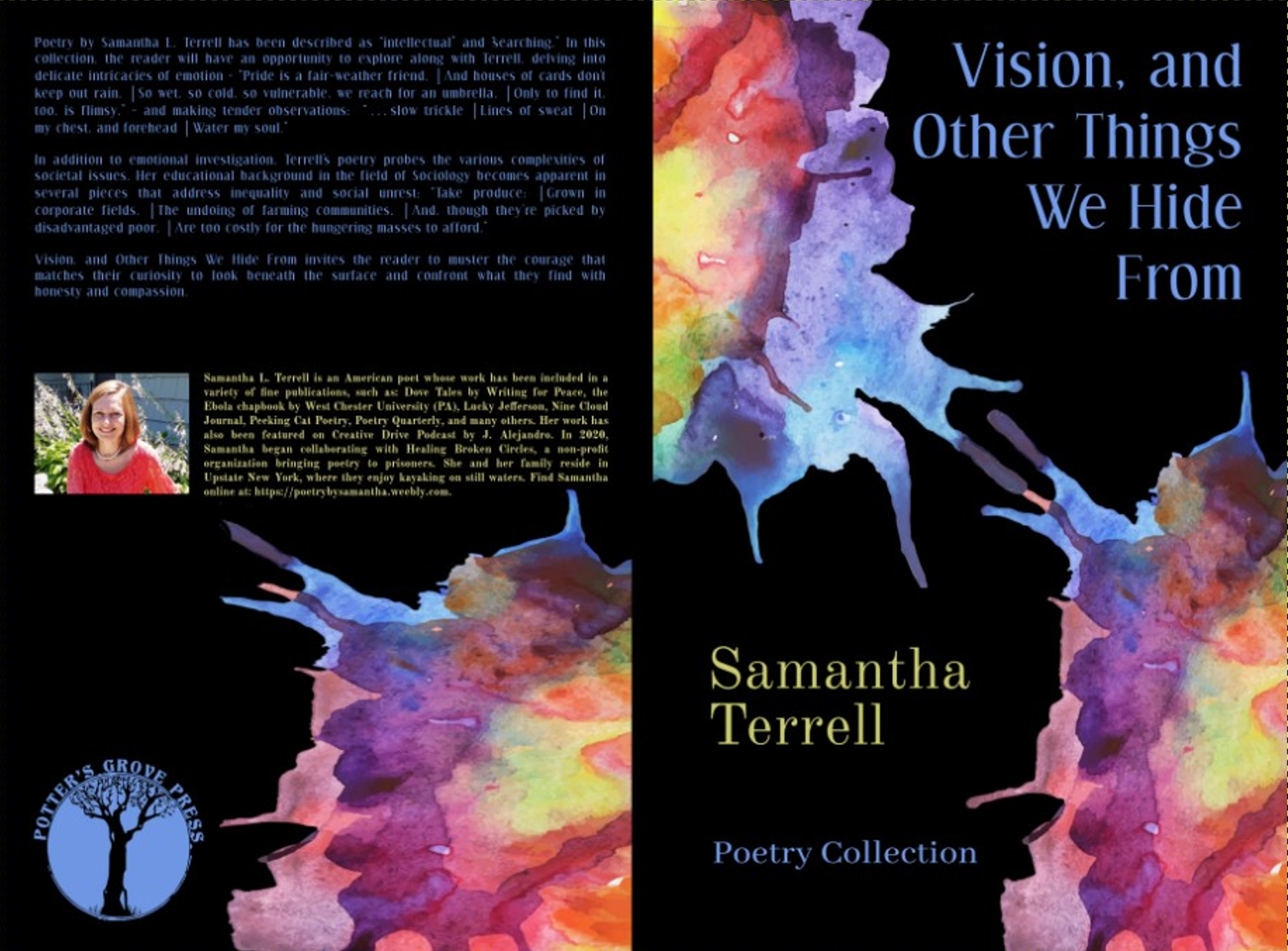 vision, samantha terrell cover